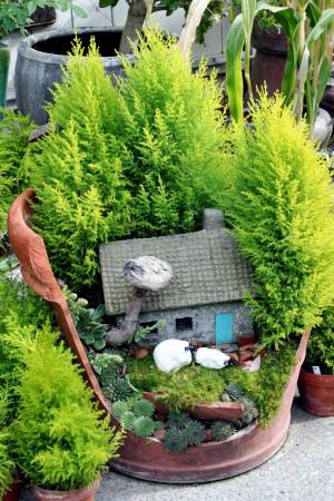 ... Gardens, Fairies Gardens, Fairies House, Plants, Clay Pots, Miniatures
