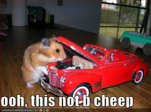 funny-pictures-your-hamster-mechanic-will-charge-a-pretty-penny