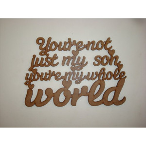 You're not just my son you're my whole world hanging plaque