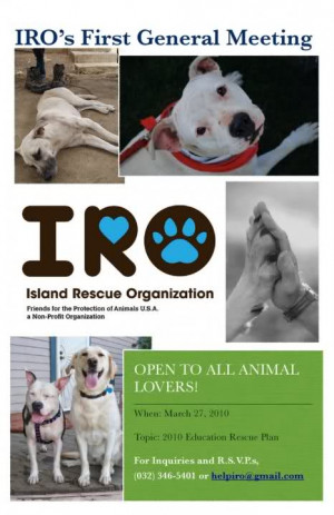 IRO (Island Rescue Organization)