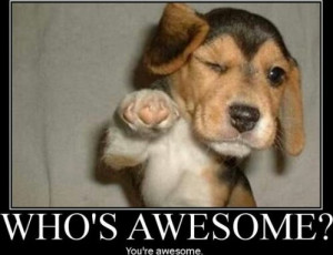 don't care what you think of you. I think you're awesome!