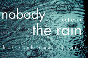 Rain Funny Quotes And Sayings nobody, not even the rain,