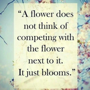 cute quote :D Flower Quote, Inspiration, Wisdom, Pretty Quote, Roses ...