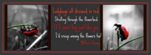 Lady Bug/Power of Quotes