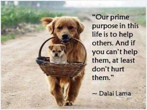 Quotations - purpose - http://todays-quotes.com/?p=10433