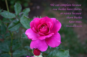 can complain because rose bushes have thorns, or rejoice because thorn ...