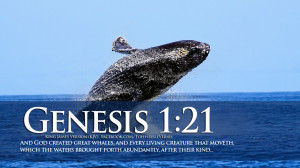 Bible Verses On Creation Genesis 1:21 Jumping Whale HD Wallpaper