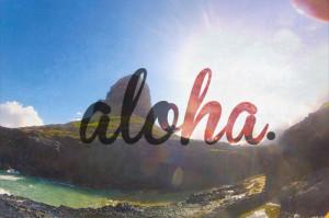 waves ocean hawaii Aloha surf life