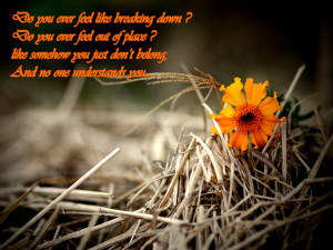 Do you ever feel like breaking down?
