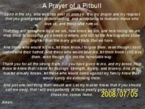 hawaiidermatology com pitbull pitbull prayer the pitbull prayer http ...