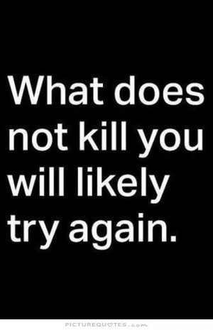 Funny Quotes Perseverance Quotes Persistence Quotes Try Quotes