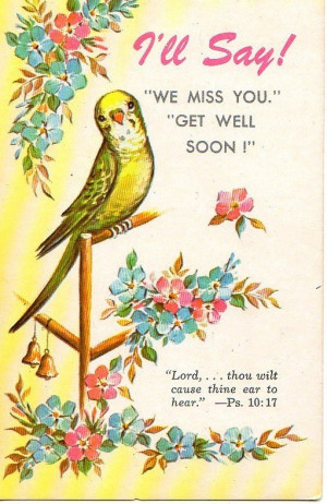ll Say We miss you Get well soon vintage postcard Parakeet flowers ...