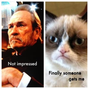 grumpy cat tommy lee jones