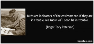 Ing Soon Birds Quotes Home...