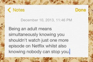 funny-picture-adult-Netflix-quote-notes