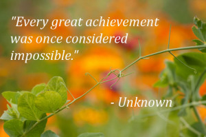 Every great achievement was once considered impossible.