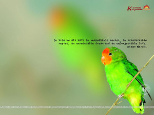 Fact-Quotation Wallpapers
