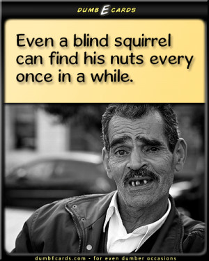 Squirrel Nuts - blind squirrel, balls, old sayingsthank you ecards ...