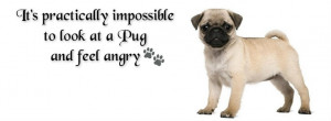 Pug Facebook Cover Photo For Your Timeline. Pug QuotesPug Quotes, Pugs ...