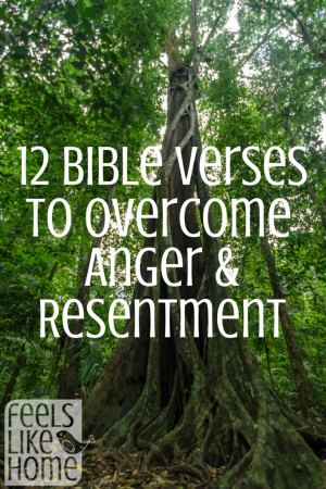 Bible Verses About Anger