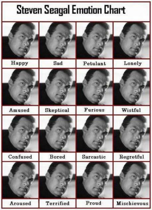 ... steven seagal emotion chart category funny pictures steven seagal