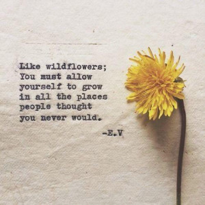 Like wildflowers ; you must allow yourself to grow in all the places ...