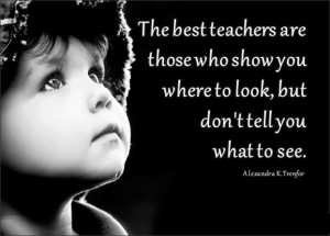 The Best Teachers of Life are those who shows you where to look but ...