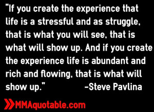 steve+pavlina+quotations+life+law+of+attraction+quotes.jpg