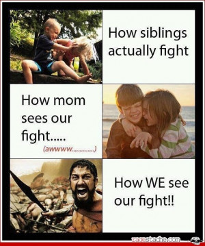 the-sibling-rivalry-.jpg