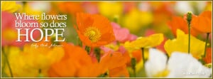 14123-flowers-bloom.jpg