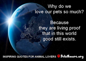 Inspiring Quotes For People Who Love Animals