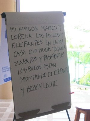 The Humorous Side of Living in Mexico