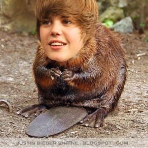 Justin-s-funny-face-justin-bieber-2012-4.jpg