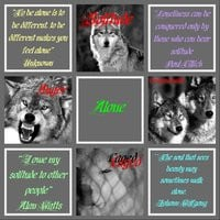wolf quotes photo: Wolves(Alone) AngerWolfPics-1.jpg