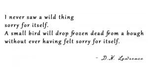 Self Pity Poem