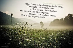 Famous Quotes From The Hunger Games Movie ~ Film the hunger games ...