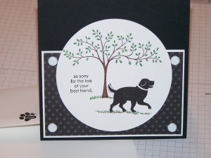 Sympathy Card for loss of a Pet