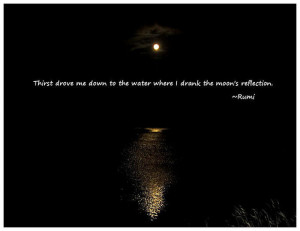 Thirst drove me down to the water where I drank the moon's reflection.