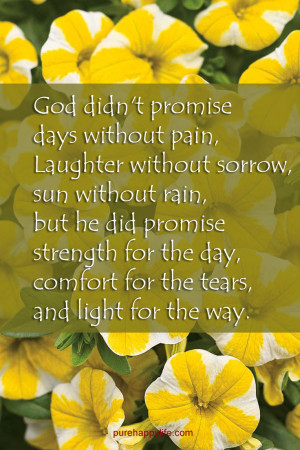 Life Quote: God didn't promise days without pain, laughter without ...