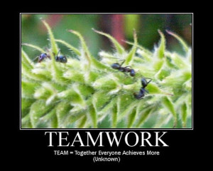 Quotes Teamwork Funny And Sayings Quotespic Doblelol