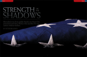Strength in the Shadows: A Tribute to the CIA and Navy SEALs