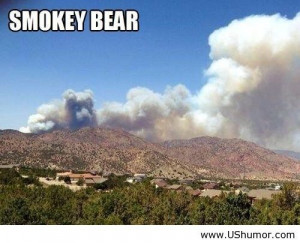 Smokey bear in a cloud US Humor - Funny pictures, Quotes, Pics, Photos ...