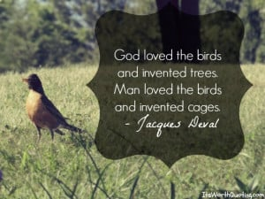 Bird Quotes: A Unique Collection of Quotes About Birds.