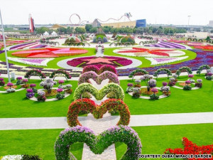 ... largest natural flower garden opens in Dubai [Copy this link to quote