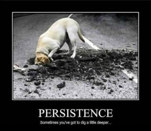 The Way to Succeed Is Through Perseverance