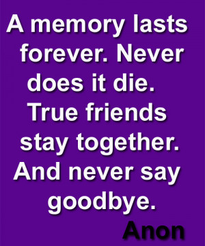 True Friends Never Say Goodbye – Friendship Quote