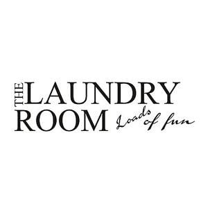 LAUNDRY-ROOM-LOADS-OF-FUN-vinyl-wall-art-sticker-quotes-BCX