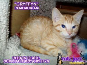 Cat Rest In Peace Quotes