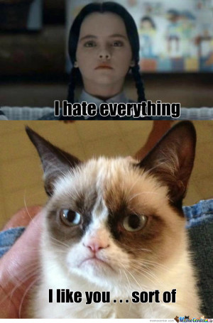 Wednesday Addams Meets Grumpy Cat
