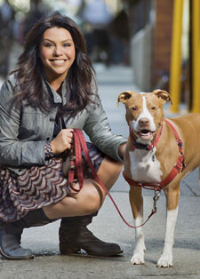 Rachael Ray Pets ( 1 )